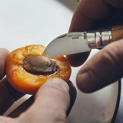 No 7 Chestnut Garlic & Fruit Pitting Knife